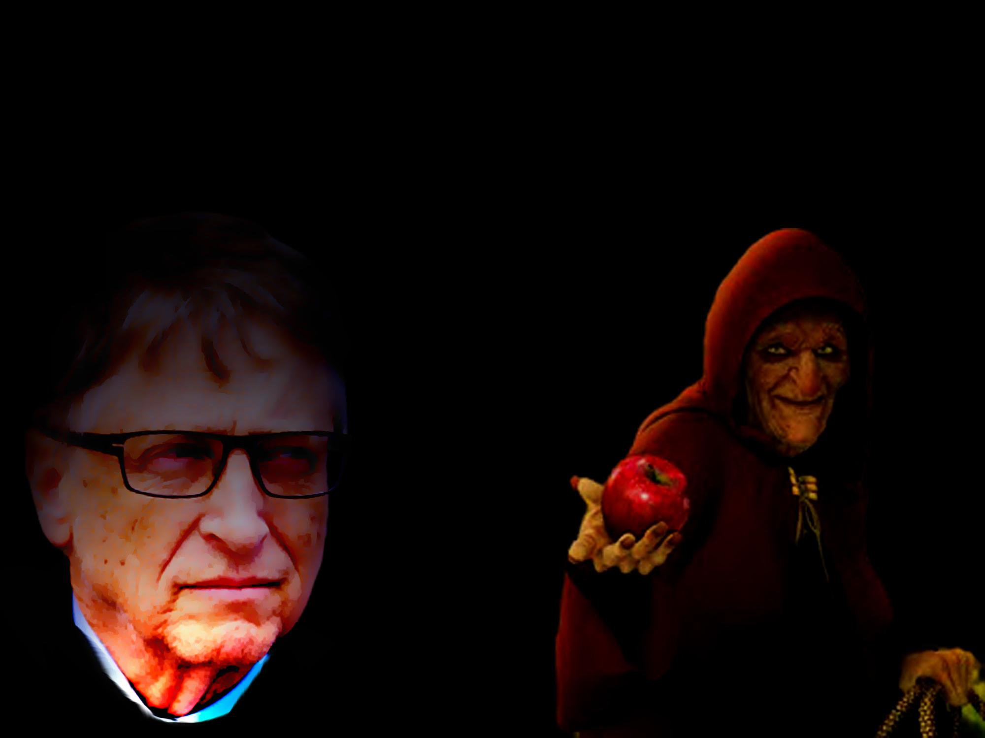 Bill Gates fits into the GMO discussion