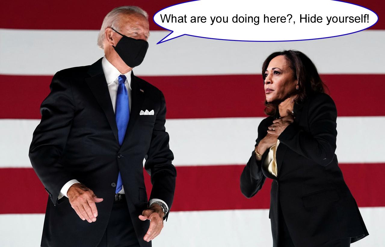 Hiding Kamala Harris